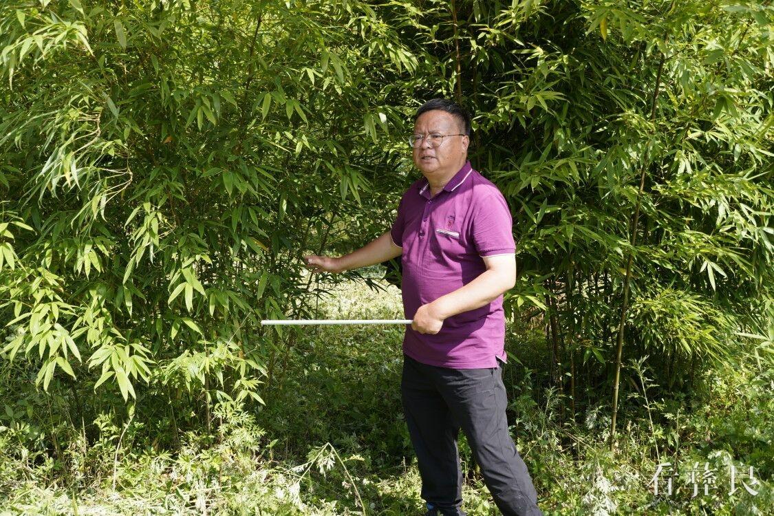 种植技术培训